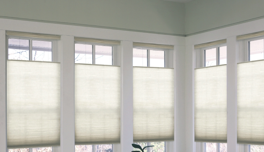 Pleated Blinds1