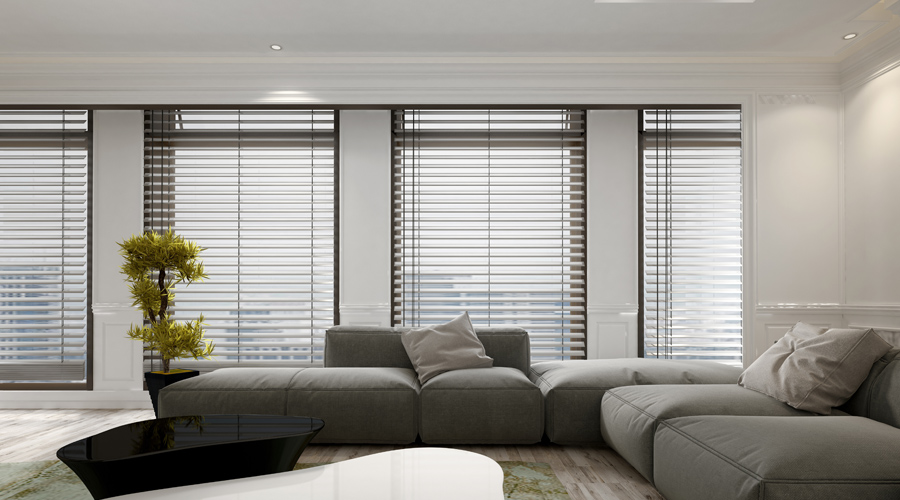 Welcome To Apollo Blinds